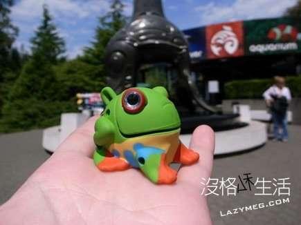 溫哥華水族館買的青蛙 會叫