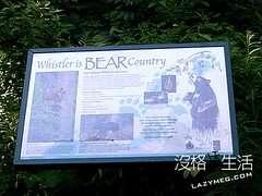 熊的告示牌