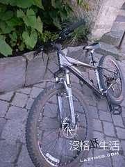 腳踏車停放的方式