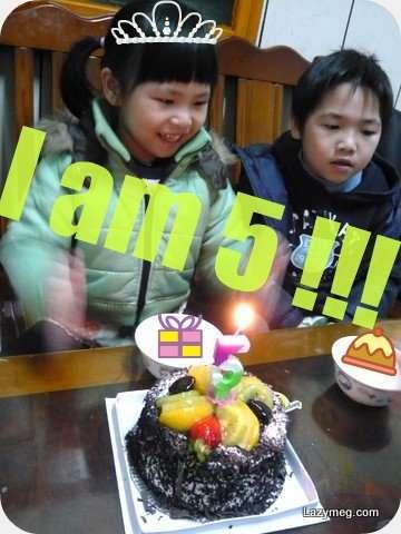 2009-01-15-nina birthday